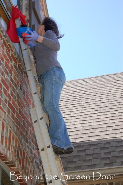 Shutters and Ladders (3)